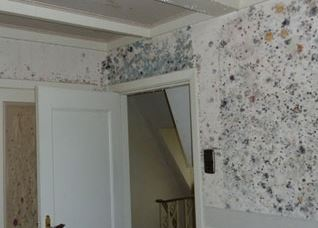 Removing bedroom walls mold